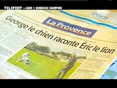 laprovence_chien.jpg